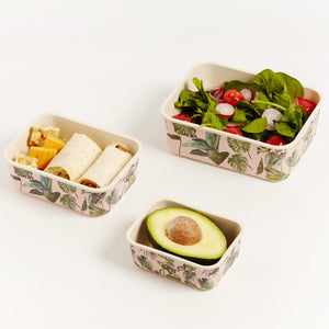 MONSTERA CONTAINER SET