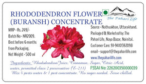 Rhododendron Flower (Buransh) Concentrate