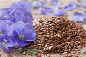 Alsi (Flax seeds) Salt