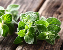 Load image into Gallery viewer, Oregano Leaves