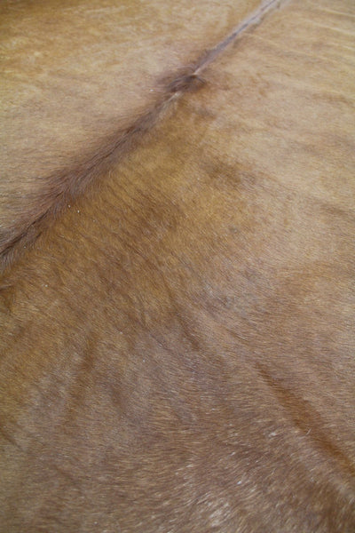 Whole Cowhide Animal Hide Contemporary Rug