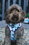 Pink Geometric Dog Harness (Cockapoo)