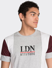 Load image into Gallery viewer, Grey 'LDN' vertical blocked t-shirt