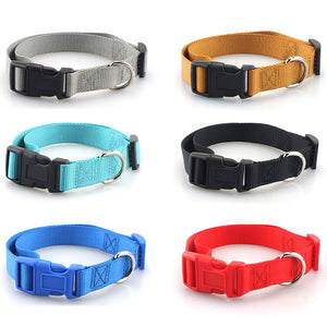 Dog Collar with Quick Snap Buckle