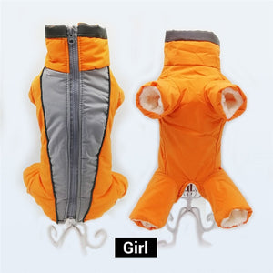 Waterproof Jumpsuit Trousers Male/ Female Dog Reflective Small Dog