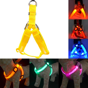 Rechargeable LED Nylon Harness