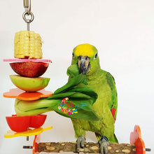 Load image into Gallery viewer, Bird Food Holder  Stainless Steel Parrot Fruit Vegetable Stick Holder Bird Treat Skewer