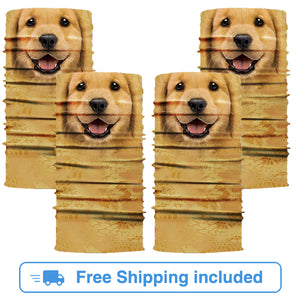 Golden Retriever 4-Pack