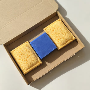 Scrub Sponges Cleaning Kit