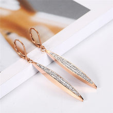 Load image into Gallery viewer, Charming Stainless Steel Drop Earrings