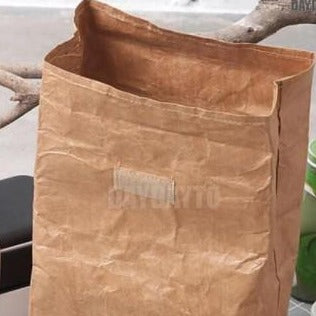 Insulated Tyvek Paper Lunch Bag