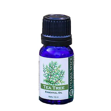 Essential Oil Tea Tree 10 ml / Each - Zero Waste Bali
