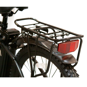 ew-rugged ebike back image