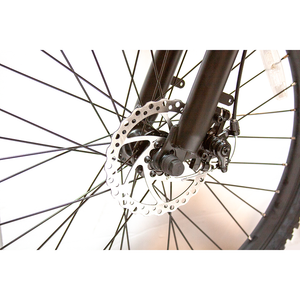 ew rugged ebike close up wheel image