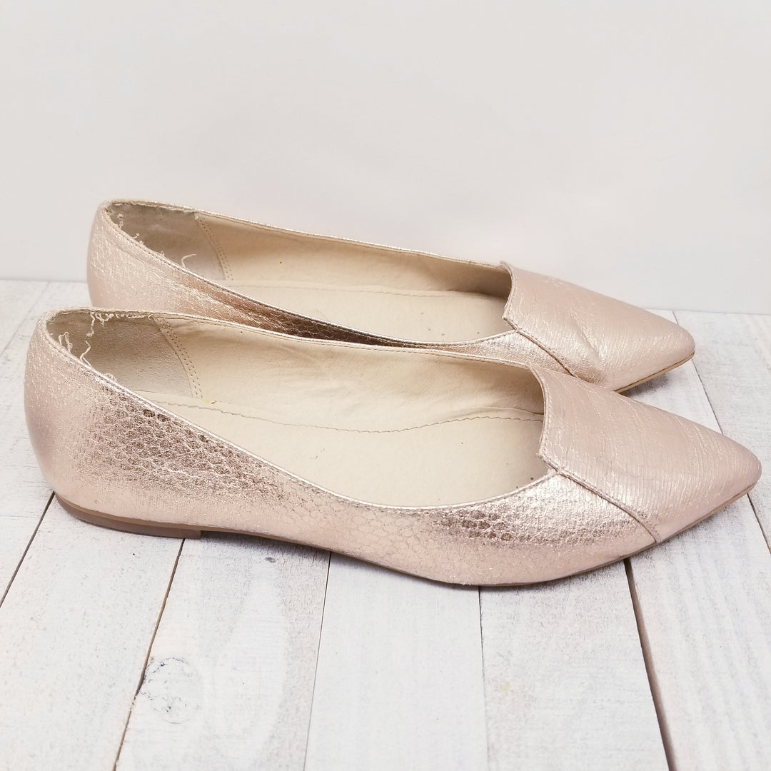 Photo #1 - BRAND:    CLOTHES MENTOR<BR>STYLE: SHOES FLATS<BR>COLOR: METALLIC<BR>SIZE: 6<BR>OTHER INFO: CALLISTO OF CALIFORNIA -<BR>SKU: 205-205280-17061