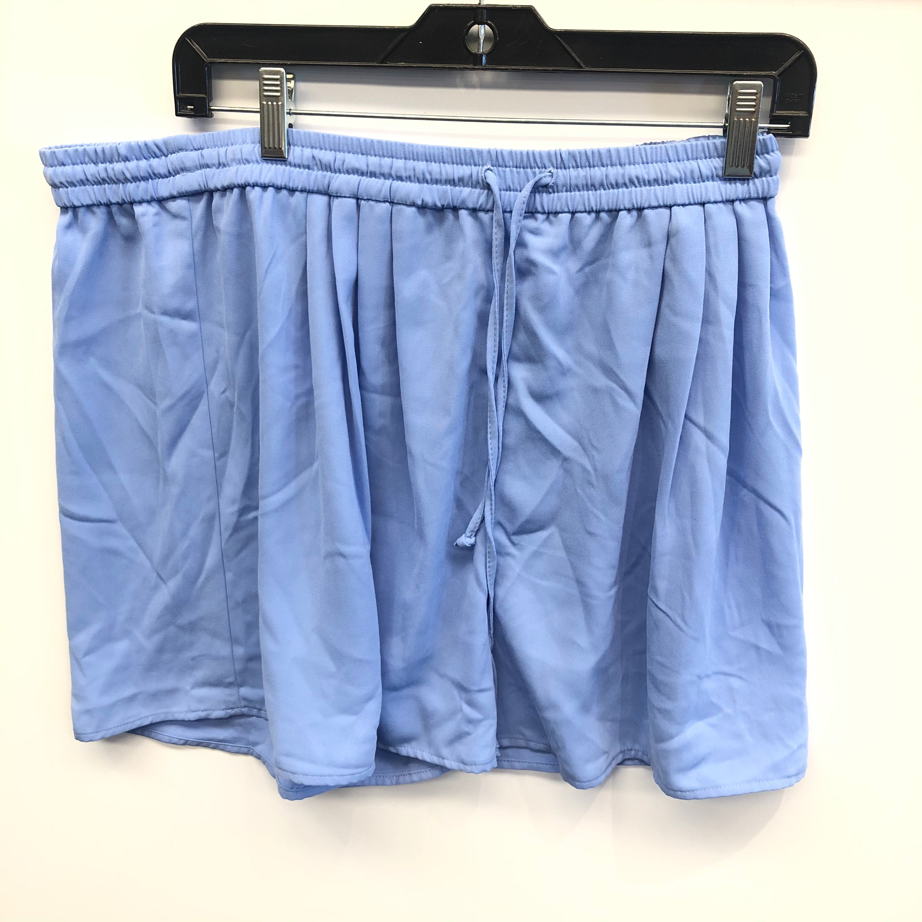 Primary Photo - BRAND: J CREW <BR>STYLE: SHORTS <BR>COLOR: BLUE <BR>SIZE: L <BR>SKU: 205-205250-57543