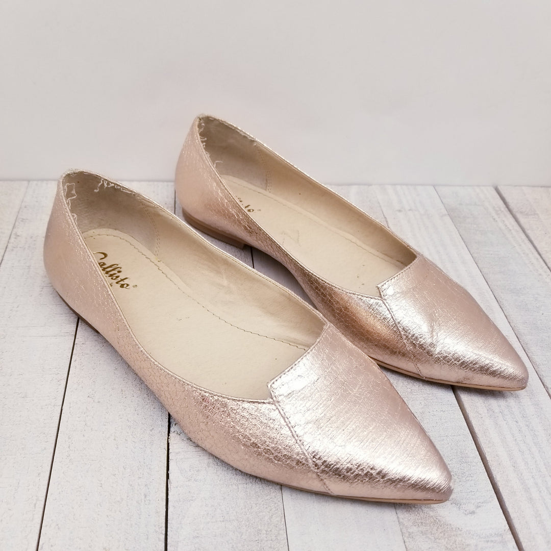 Primary Photo - BRAND:    CLOTHES MENTOR<BR>STYLE: SHOES FLATS<BR>COLOR: METALLIC<BR>SIZE: 6<BR>OTHER INFO: CALLISTO OF CALIFORNIA -<BR>SKU: 205-205280-17061