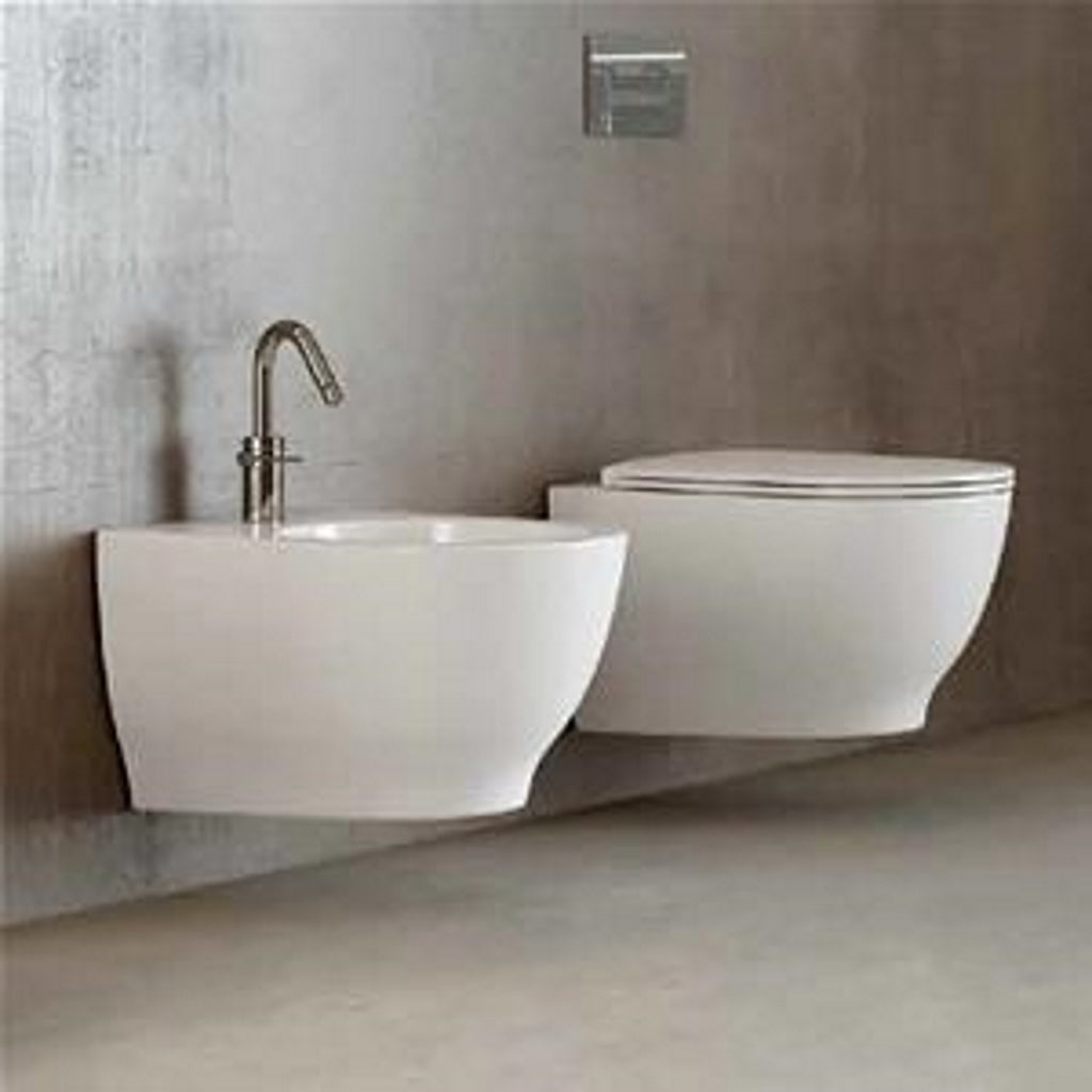 Wall-hung sanitary WC bidet softclose seat RAK MOON