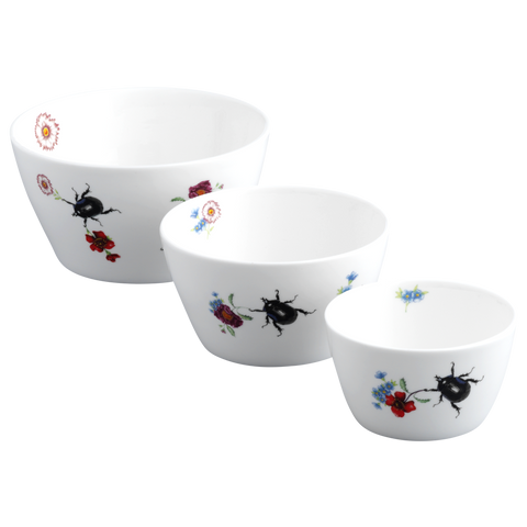 Scarab Beetle Nesting Bowl Set