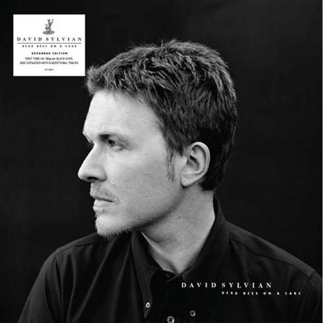 David Sylvian / Dead Bees On A Cake expanded edition on 2LP black vinyl