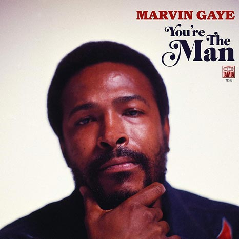 Marvin Gaye / You're The Man 2LP vinyl