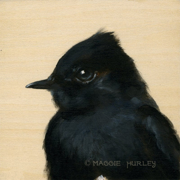 Phoebe Bird Print on Wood by Maggie Hurley