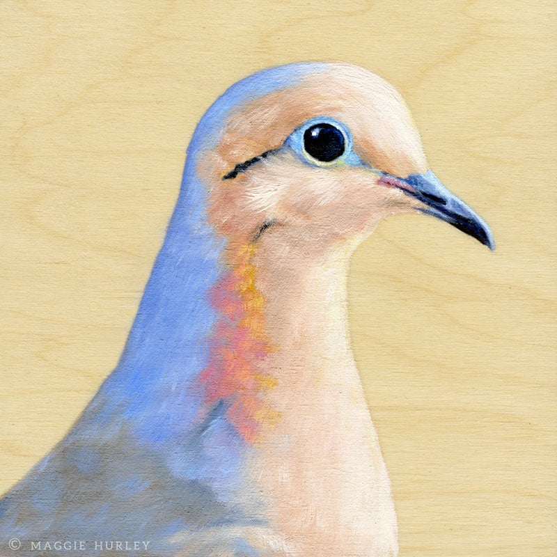 Mourning Dove Bird Print on Wood by Maggie Hurley