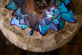 BLUE . Morpho Bloom 02