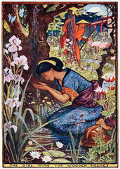 The Violet Fairy Book Illustration