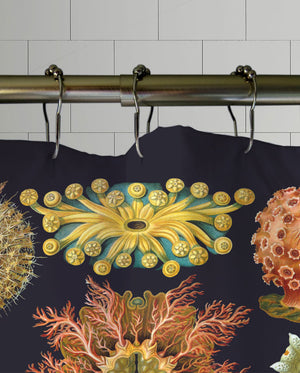 Crustaceans Shower Curtain