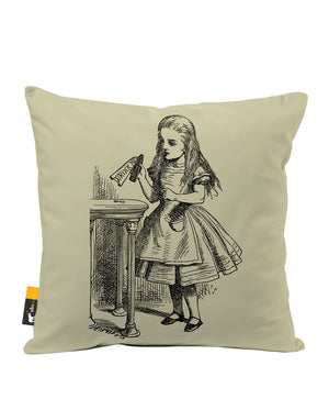 Ask Alice Faux Suede Throw Pillow