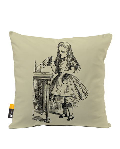 Ask Alice Luxe Suede Throw Pillow