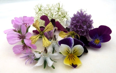 EDIBLE FLOWERS - Jackie Leonards
