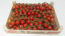 Load image into Gallery viewer, TOMATO CHERRY VINE PUNNET [x300grms] - Jackie Leonards