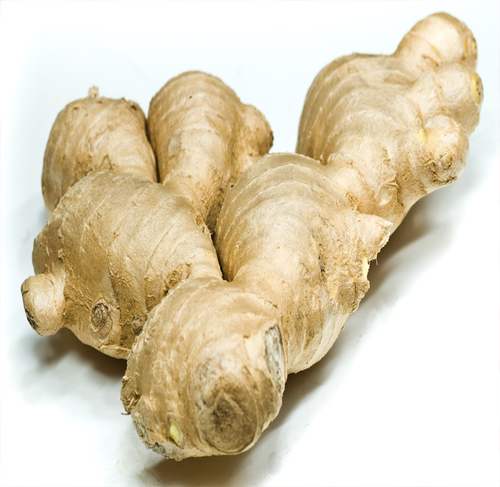 GINGER ROOT FRESH KILO - Jackie Leonards