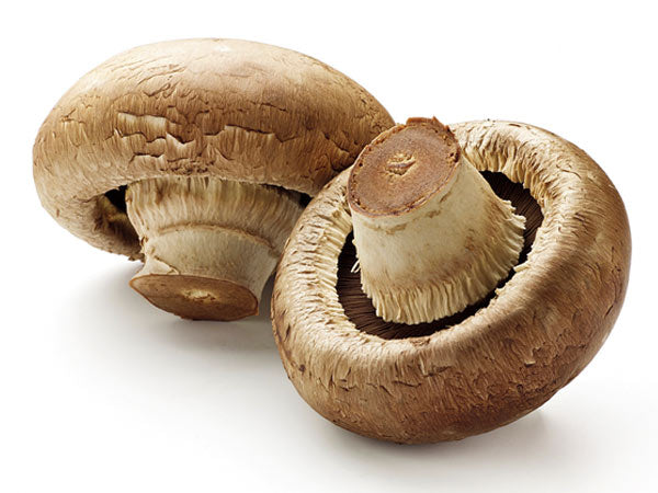 MUSHROOM SLICED (x250grm) RETAIL PACK - Jackie Leonards