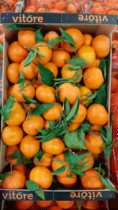 Marmalade Seville Sour Oranges [6.5kg] Small Box - Jackie Leonards