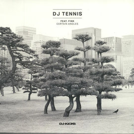DJ Tennis Feat. Fink - Certain Angles