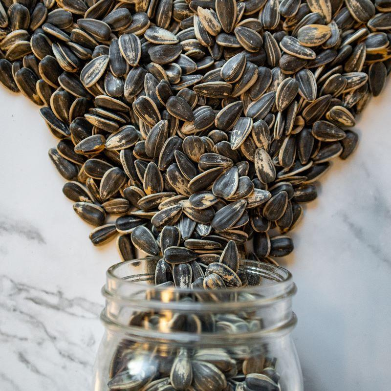 in shell sunflower seeds