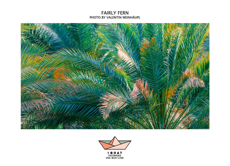 Fairly Fern