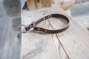 handmade in Canada leather limited slip dog collar in brown with antique antique brass hardware