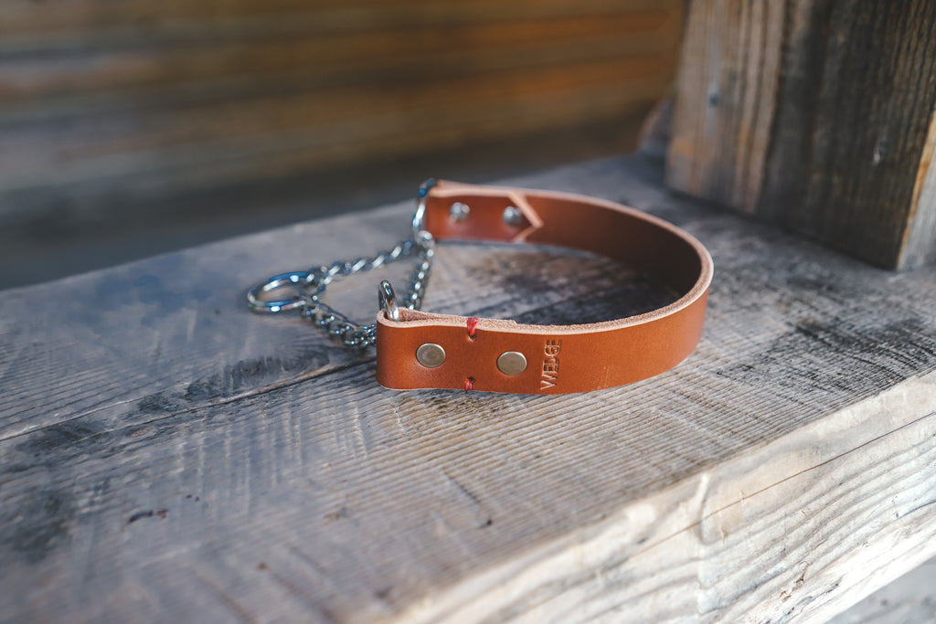 handmade in Canada leather dog martingale collar in cognac with silver hardware