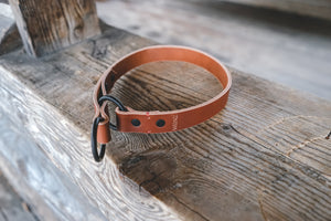 handmade in Canada leather limited slip dog collar in cognac with black hardware