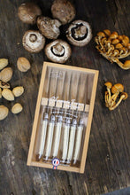 Load image into Gallery viewer, Laguiole 6 Piece Ivory Knife Set in Wooden Box