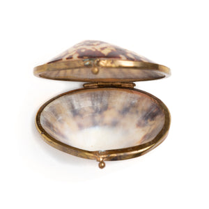 Victorian Seashell Box with Gold Clasp