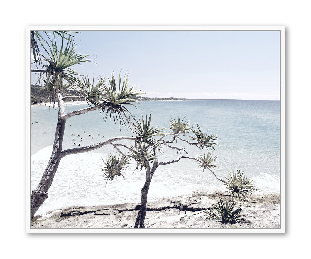 Beach Trees Framed Print