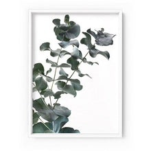 Load image into Gallery viewer, Eucalyptus Gum Leaves IV - Art Print