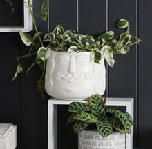 Load image into Gallery viewer, Pierre Ceramic Planter