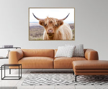 Load image into Gallery viewer, Henry Highland Cow