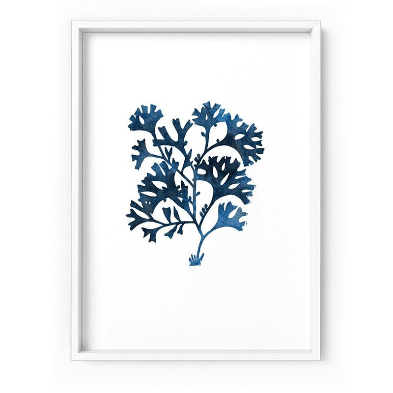 Hamptons Watercolour Blue Coral I - Art Print